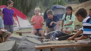 Kids at summer camp around campfire video