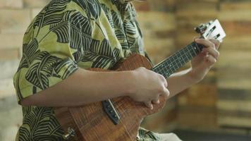 man die ukelele speelt in Hawaï video