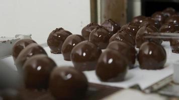 Trufas de chocolate en una cinta transportadora en la fábrica de caramelos video