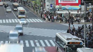 Tokyo, Japan circa-2018.  Time lapse shot of cars and people crossing street at Shibuya Crossing in Tokyo, Japan. video