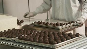 Chocolate truffles sorted onto trays at candy factory video