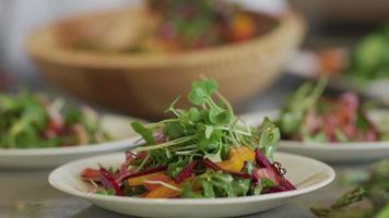 close up shot de salada fresca no prato video
