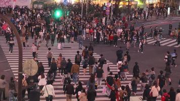 Tokyo, Japan circa-2018.  Crowds of people walking across street at Shibuya Crossing in Tokyo, Japan. video