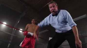 arbitre de boxe comptant le boxeur video