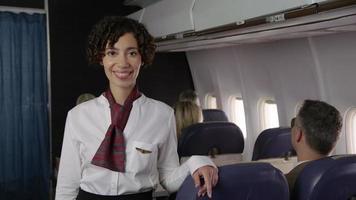 retrato de comissário de bordo de avião video