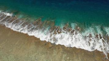 vista aerea della spiaggia di bora bora, Polinesia francese. video