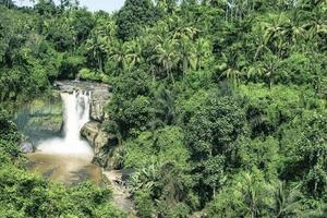 Waterfall in the deep jungle in Bali photo