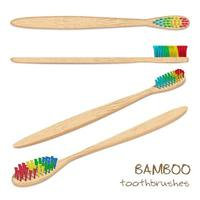 Bamboo colored toothbrushes. Natural bristle. Zero waste, Biodegradable material. vector
