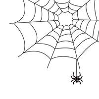 Spider and cobweb in the corner Decorative element for design black and white simple vector illustration Dangerous insect arthropod Halloween spider web
