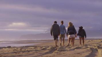 grupp vänner gå längs stranden tillsammans video