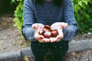Cerca de castañas en manos de una joven caucásica mientras está sentado en el suelo en un parque foto