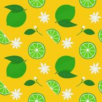 Summer seamless pattern with limes vector