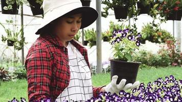 uma jovem jardineira feliz de avental e luvas trabalhando video