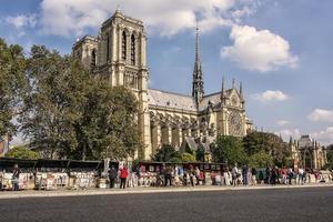 catedral de notre dame en parís foto