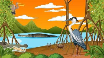 Animals live in Mangrove forest at sunset time scene vector