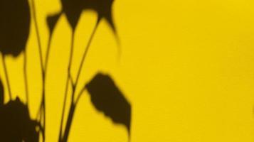 deja sombras sobre papel amarillo pastel. fondo abstracto. foto de stock.