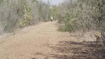 A young woman runner going trail running. video