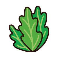 lettuce fresh line and fill style vector