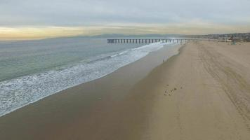 Aerial shot of young man running on the beach. video