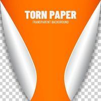 Pretty orange paper vector