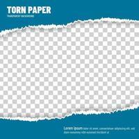 Torn paper blue vector