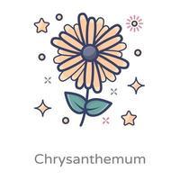 hermoso diseño de crisantemo vector