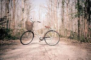 hermosa bicicleta vintage en el bosque foto