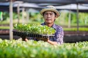 Agricultor asiático con sombrero sosteniendo plántulas jóvenes en su granja en el huerto foto