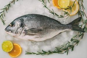 Dorada de pescado sobre hielo con romero, limón, naranja y lima. orata fresca, pescado dorade en la mesa de la cocina. foto