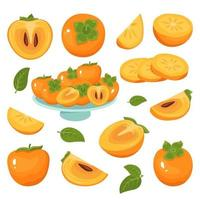 Persimmon icons set, whole fruit, half, slices, with and without seeds vector