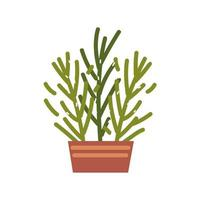 potted plant decoration vector