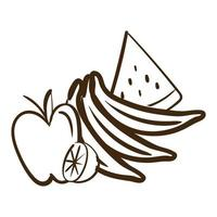 fresh fruits line style icon vector
