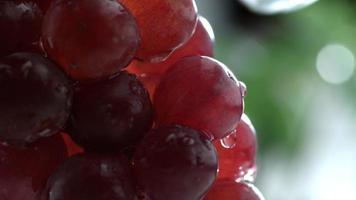 água espirrando nas uvas em câmera lenta filmada em phantom flex 4k a 1000 fps video