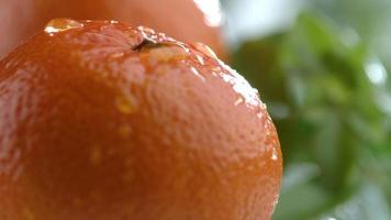água pinga em laranja em câmera lenta filmada em phantom flex 4k a 1000 fps video