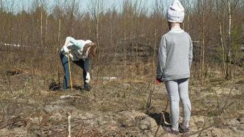 plantando uma muda de árvore para a floresta video