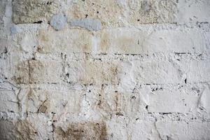 White grunge brick background photo