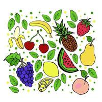 Set of different tropical and garden fruits, exotic fruits, juicy summer treats, bananas, grapes, sweet cherries, strawberries, peach, pineapple, lemon, vector objects on a white background, doodle