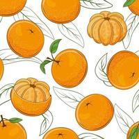 Seamless Pattern from Juicy Mandarins vector
