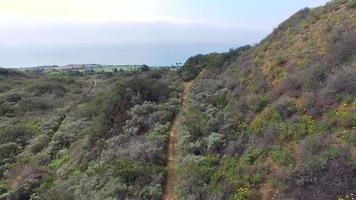 flygfoto av en ung man spår som kör på en naturskön vandringsled. video