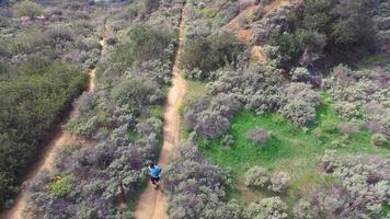 Toma aérea de un sendero joven corriendo por un sendero escénico. video