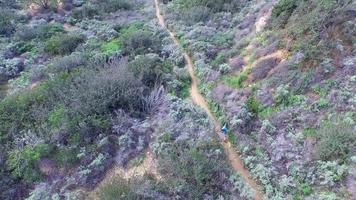 photo aérienne d'un jeune homme qui court sur un sentier de randonnée pittoresque. video