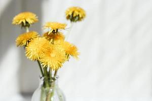 ramo de dientes de león amarillos, sobre un fondo claro. concepto de verano. foto