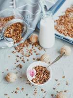 granola casera orgánica foto