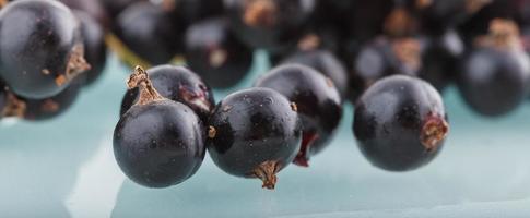 grosella negra, bayas del bio jardín saludable sabor de verano frutas silvestres foto