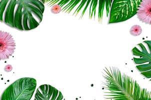 hojas de fondo blanco con hojas verdes y flores flatlay foto