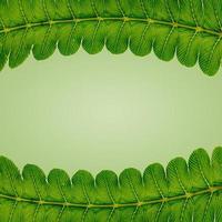 arte conceptual diseño de fondo mínimo deja monstruo azul tropical y hojas en vibrante degradado audaz diseño de hojas tropicales de verano de moda foto