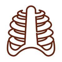 human body rib cage bones anatomy organ health line icon style vector