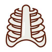 human body rib cage bones anatomy organ health line and fill icon vector
