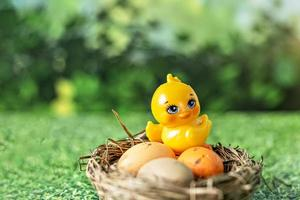 Easter eggs in a natural nest and decorative chicken on a blurred green background with grass texture photo