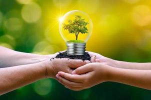 The forest and the trees are in the light. Concepts of environmental conservation and global warming plant growing inside lamp bulb over dry soil in saving earth concept photo